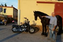 La mia bimba ed il cavallo