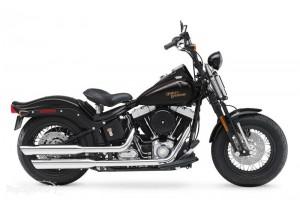 Harley-Davidscon Crossbones